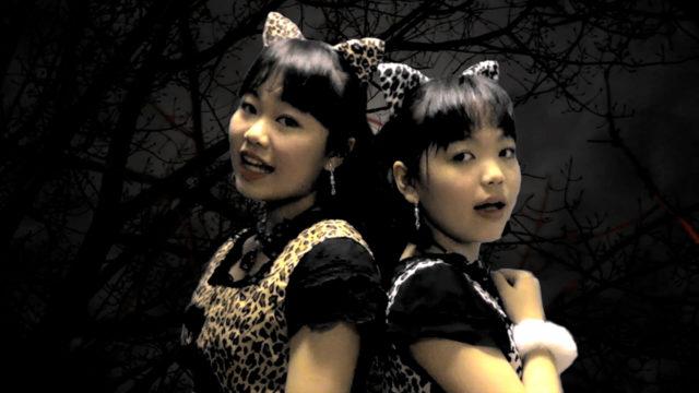 LocaKaRiオリジナル曲「彷徨い猫」のミュージックビデオ(MV)を公開しました!!